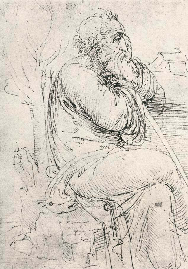 Seated old man - by Leonardo da Vinci