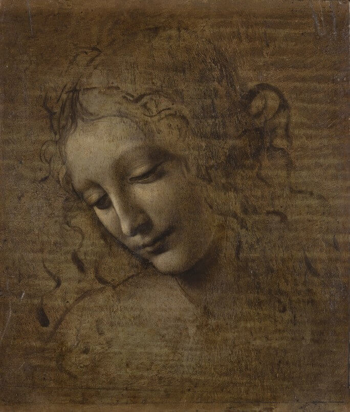 Head of a Woman - by Leonardo Da Vinci